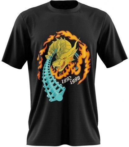 Roller Coaster T Shirt design