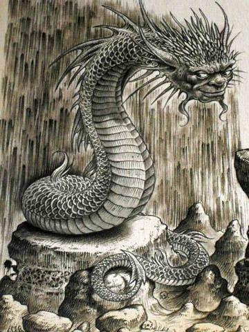 dragon naga