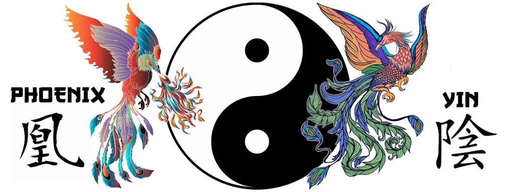 yin phoenix